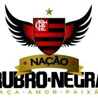 Veja como ser Sócio Torcedor do Flamengo
